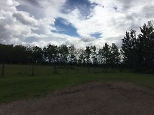 70 ACRES FOR SALE - CLOSE TO NORTH SASK. RIVER