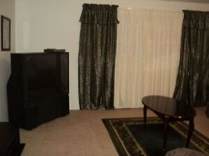 1BR Furnished Suite - Avail April 1/17 -Near Scott Rd. Skytrain!