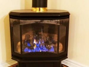 $869-1 BDRM BSMT with GAS FIREPLACE/LAUNDRY/WI-FI/PRKING in Over