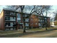 Huge 2 Bedroom Condo Steps From Whyte Ave