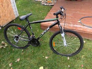 2 - CCM Nitro XT Mountain Bikes  $150 ea in brand new condition,