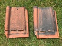 Sterreberg Courtrai clay roof tiles