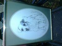 Pollyanna Pickering terrier picture