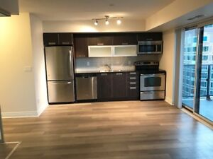 Couture Condo - Luxury 1 bedroom Condo for rent in Downtown
