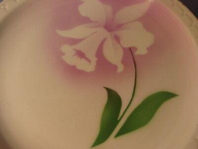 Vintage Syracuse China Airbrush Daffodil Pattern Dinner Plate