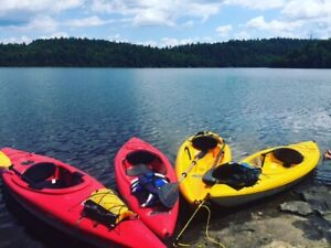 Used or New Canoe, Kayak & Paddle Boats for Sale in Chatham