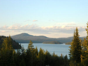 16 Acres overlooking Horsefly Lake! Cleared and Ready!