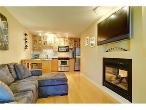 Beautiful 1 Bed + Den + Solarium Condo in Yaletown with Gym