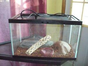 10 gallon terrarium w/ sliding locking mesh lid and accessories