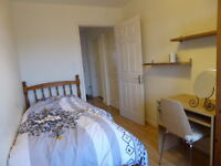 Very clean and large single room for a non-smoker