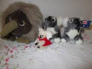 Australian Souvenirs. Plush Echidna & Koalas. Morayfield Caboolture Area Preview