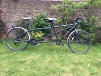 For sale: Dawes Galaxy tandem bicycle in British racing green. £750 ono.