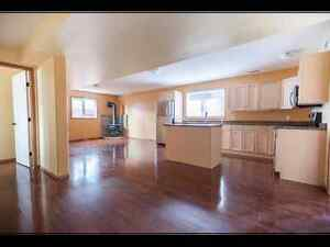 Brand new, 2 Bedroom Suite, 1 Bath available for June.
