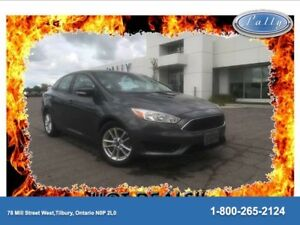 2015 Ford Focus SE, One Owner, Local Trade!!!