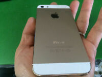 [SpeedJOBS] iPhone 5S, Gold, Brand New Condition!