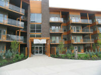 SUN RIVERS - EXECUTIVE CONDO WITH AMAZING VIEW!!