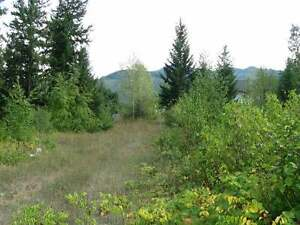 Level .35 acre building lot in Grizzly Heights.