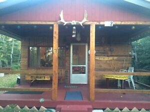 Turtle Lake, South Bay Cabin For Sale