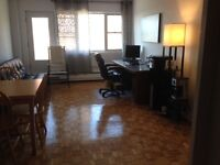 3 1/2 Huge and Clean Apartment (1 minute from Atwater Station)