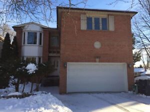 Yonge&Steeles big house for rent/ Available immediately!!!