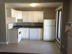 LRG 2BD - SPECIAL PRICE! SAVE $300! FIRST MONTH RENT FREE!