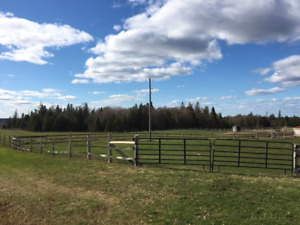 122 Acre Horse Farm for Sale near Sussex, NB
