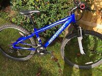 Child Revalution Mountain Bike