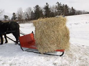 Horse Trailering - Other services Kawartha Lakes Peterborough Area image 6