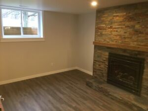 Basement apartment, east Brantford for rent.