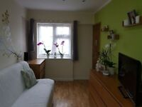 Precious Studio Apartment to rent in Hounslow central