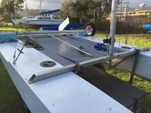 Fiberglass Paper Tiger For Sale Rosebud Mornington Peninsula Preview
