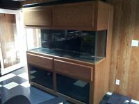 180 Gallon Reef Tank with Stand and lighting (Aquarium)