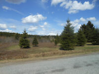 LOT 90-3 HIGHWAY 124, NORTON