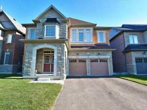 Luxurious House for Rent in Kleinberg