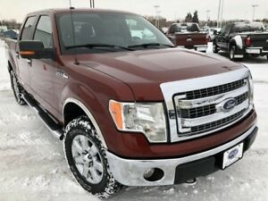 2014 Ford F-150 XLT (Remote Start, Back Up Camera, Power Pedals)