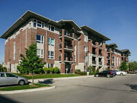Gorgeous Upgraded South end Luxury 1 Bedroom Condo!
