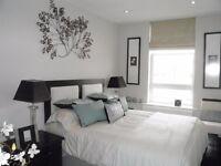 Amazing, modern two bedroom flat - Wimbledon