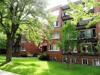 Great apartment 15 mins from downtown!