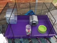 Mice cage