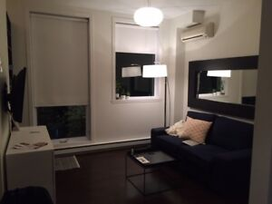 Furniture Studio/ 1Bed Apartment in the heart of Plateau.