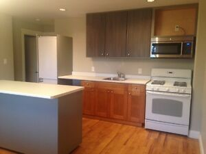 1 Bdrm + Den, In-Suite Laundry, Yard, Ground Level Suite