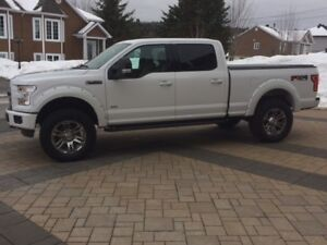Pick-Up Ford FX4- 2016