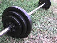 57 lb 26 kg Metal Dumbbell & Barbell Weights - Heathrow