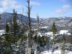 Condo alpin au Mt Edouard, 4 saisons, meublé et déco mise à jour Saguenay Saguenay-Lac-Saint-Jean image 3