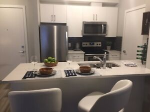 Modern, new all inclusive rental - short-term rental available