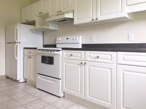 **Newly renovated one bed + den near bridge and transit**