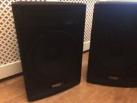 Speakers. Active and passive speaker pair