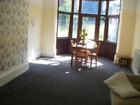 *ONE BEDROOM STUDIO FLAT**EXCELLENT BUS ROUTES**NO DSS**IDEAL FOR WORKING PROFESSIONALS**FOREST RD**
