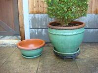 Sallow Light Green Garden Pot