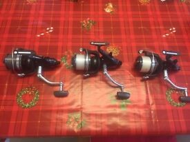 Three 3 Mint Condition Shimano Long Cast Big Pit XTA Reels For Only £270 Total - Was Almost £450